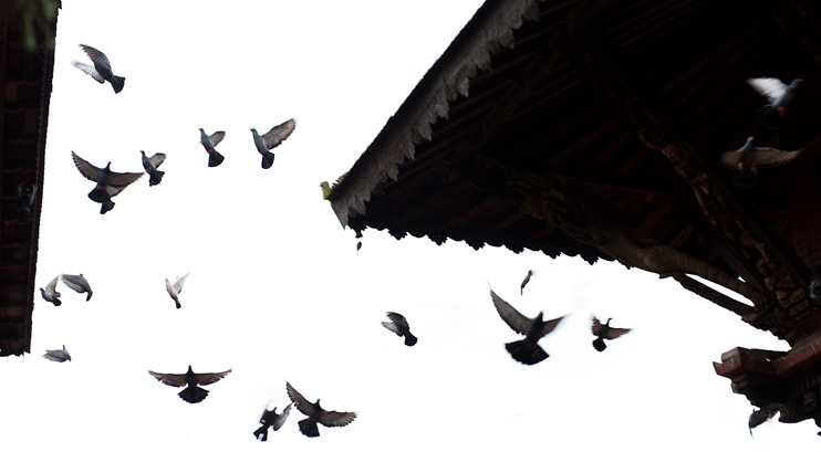 Bhaktapur, Durbar Square, Nepal, Pigeons