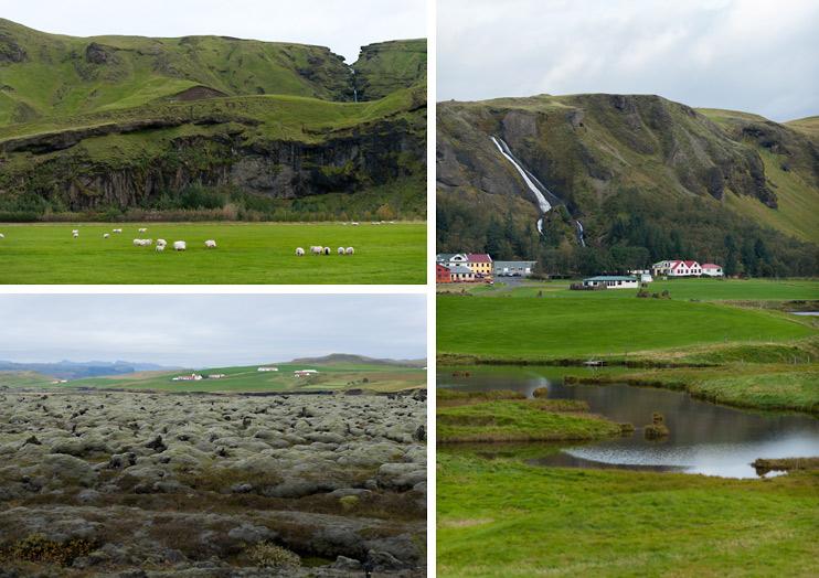 Field, Iceland, Kirkjubæjarklaustur Town, Sheep, Vík