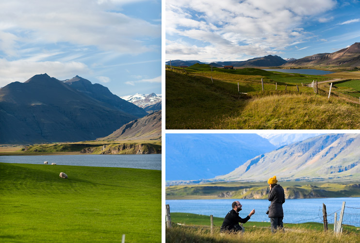 Fence, Iceland, The Proposal, Sebastien, Sejin, Sheep Field