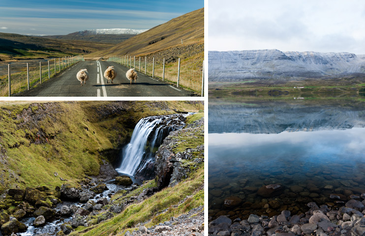Highway, Iceland, Reflection, Sheep, Waterfall