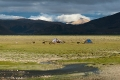 Clouds, Donkeys, Field, Nomads, Tibet, Tingri, Water