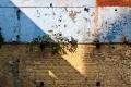 India, Varanasi, Wall