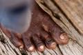 Foot, India, Varanasi