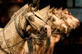 China, Clay, Horses, Terra-Cotta Warriors, Xian